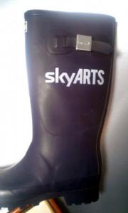 skyarts boot